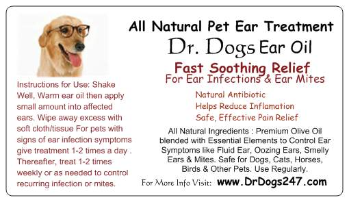 Dog Ear Treatment Ear Mites Ear Infection Remedy